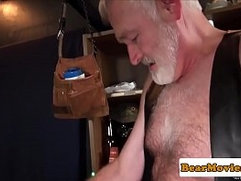Bearded bear analfucked by silver wolf